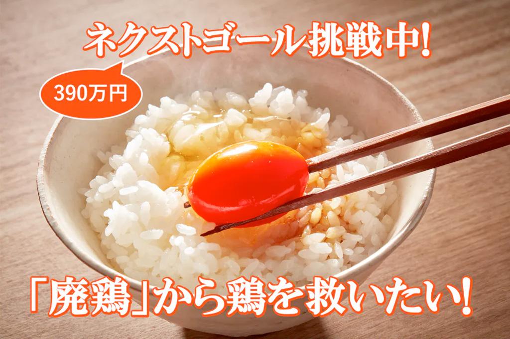 コロナ禍「廃鶏」から鶏を救え!命をふたたび輝かせる!そして最高に美味しい卵を!